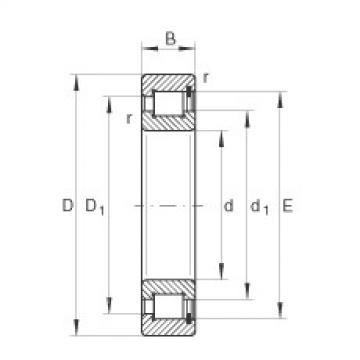 FAG محامل أسطوانية - SL1818/950-E-TB