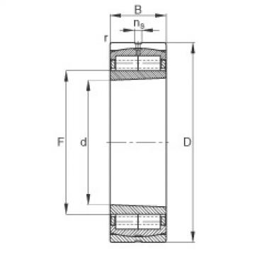 FAG محامل أسطوانية - F-800484.ZL-K-C5