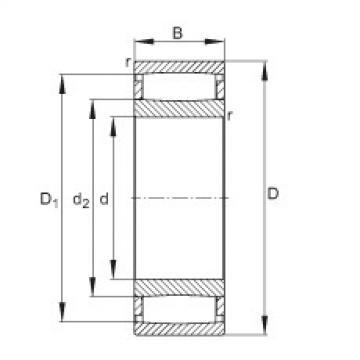 FAG محامل حلقية - C31/670-XL-M1B