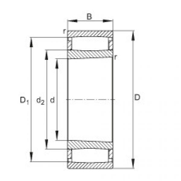 FAG محامل حلقية - C41/500-XL-K30-M1B #1 image